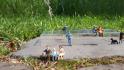 Miniaturwelt