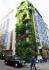 Vertikaler Garten an einem Haus in der Innenstadt.